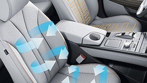 Heated and air ventilated seats